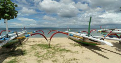Ruim aanbod Bali vakanties